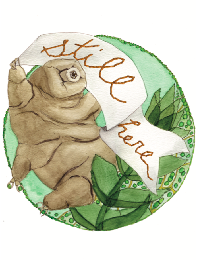 A tardigrade waves a banner that says 'still here'. Illustration by Corina Dross and Jocelyn Mosser
