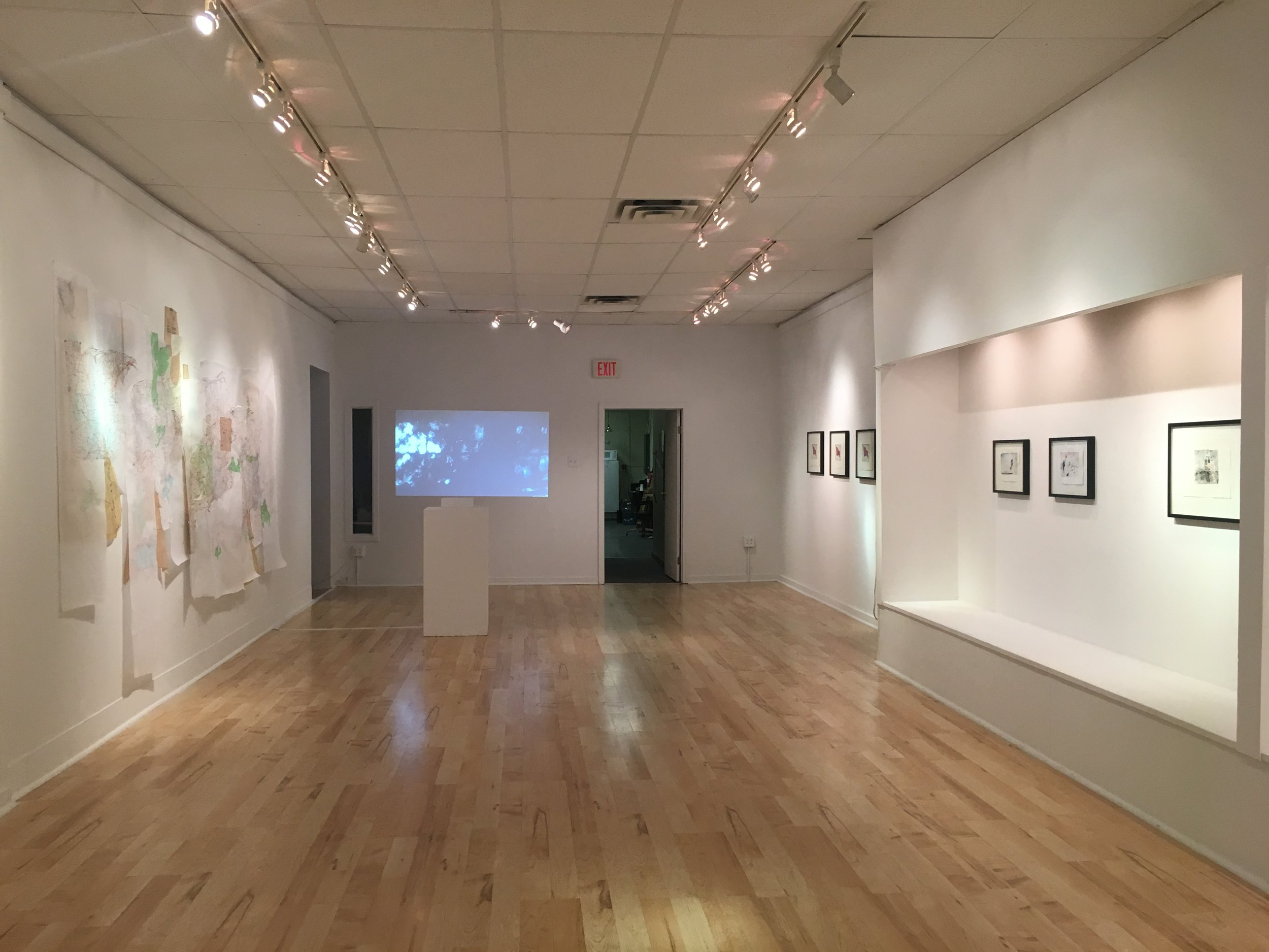 Gallery 51, install view