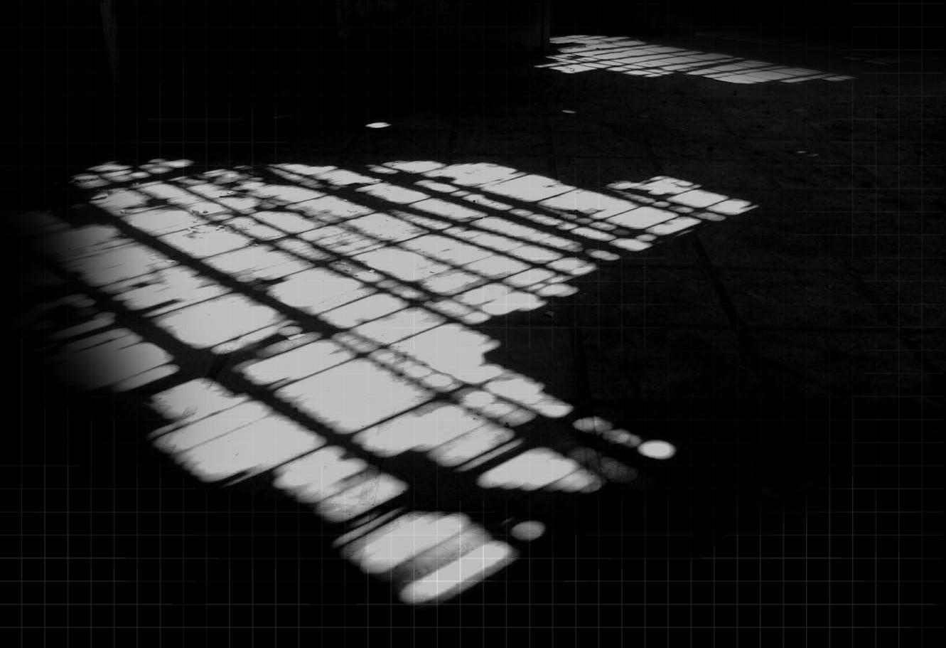"""""""Nous vivons de l'ombre d'une ombre, de quoi vivra-t-on après nous?""""  Ernest Renan"""