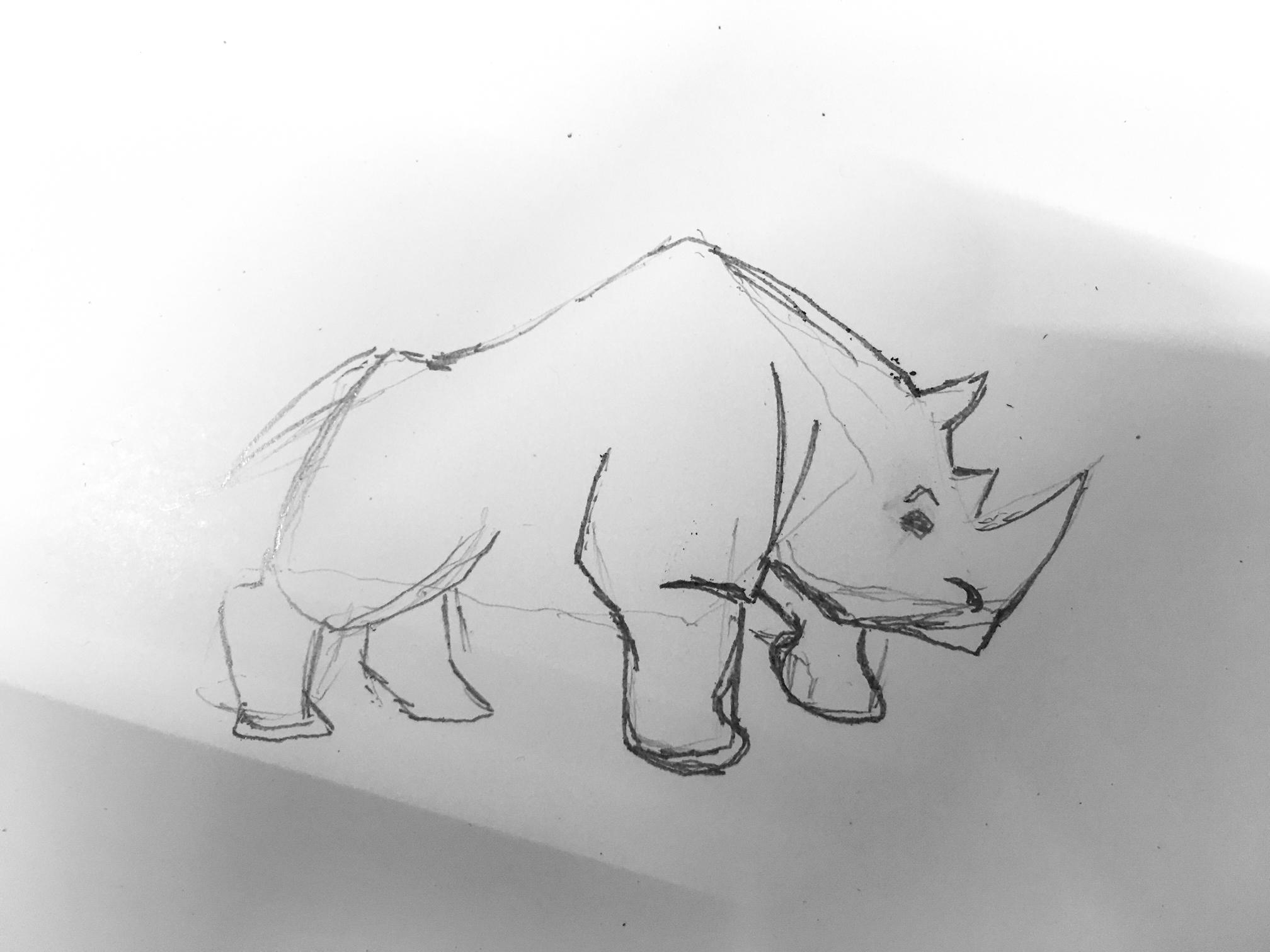 rhino-1.jpg