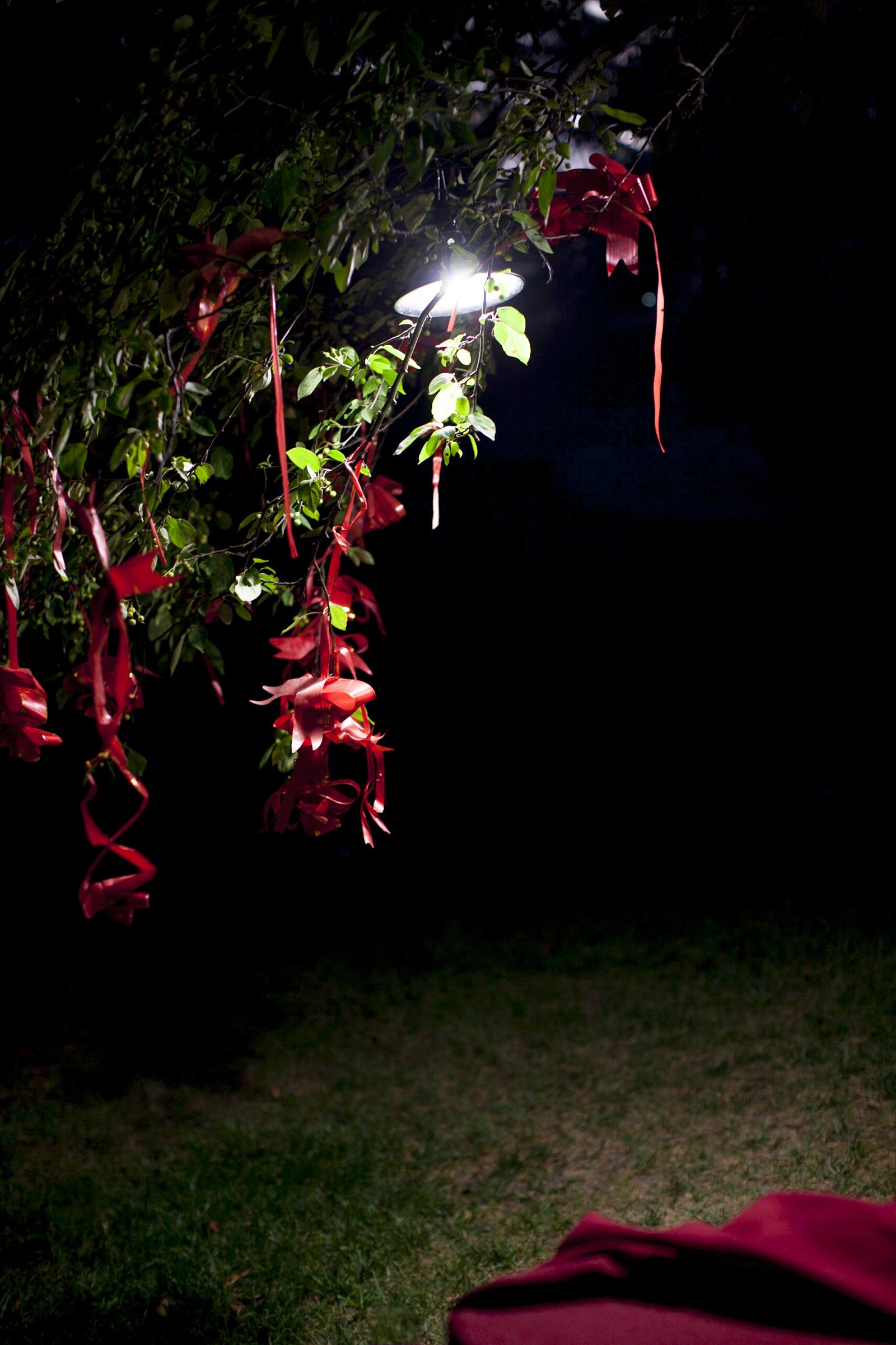 Garden Nights, 2013