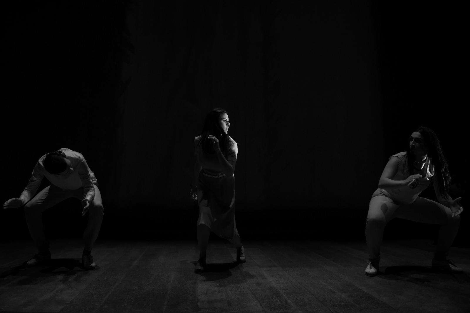 NY Times - Rhythm in Motion 2016  photo by Vitaliy Piltser