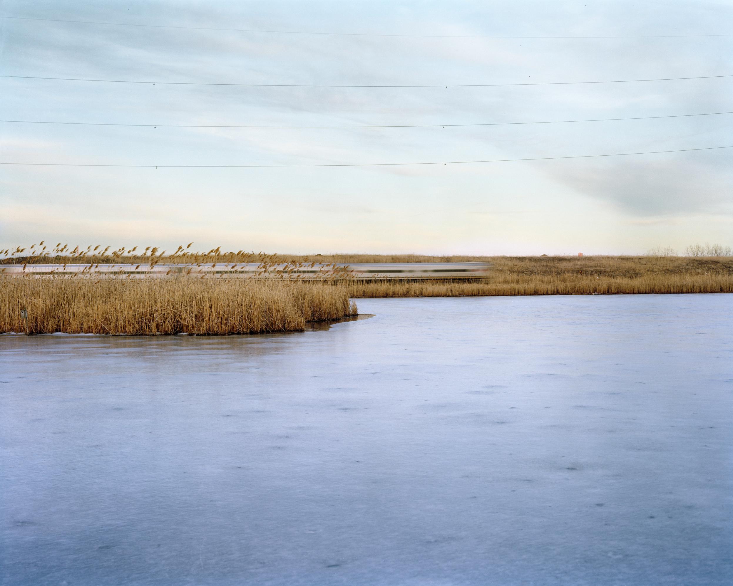 Meadowlands No. 6