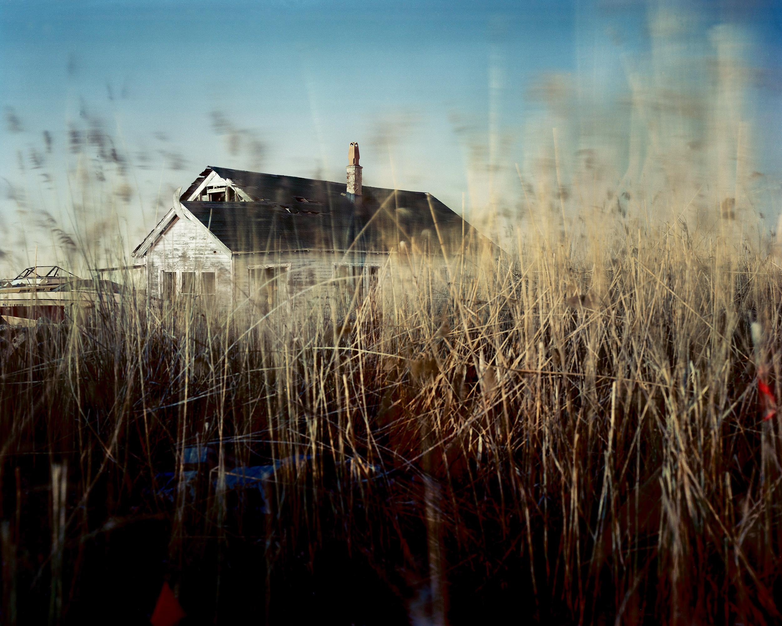 Meadowlands No. 5