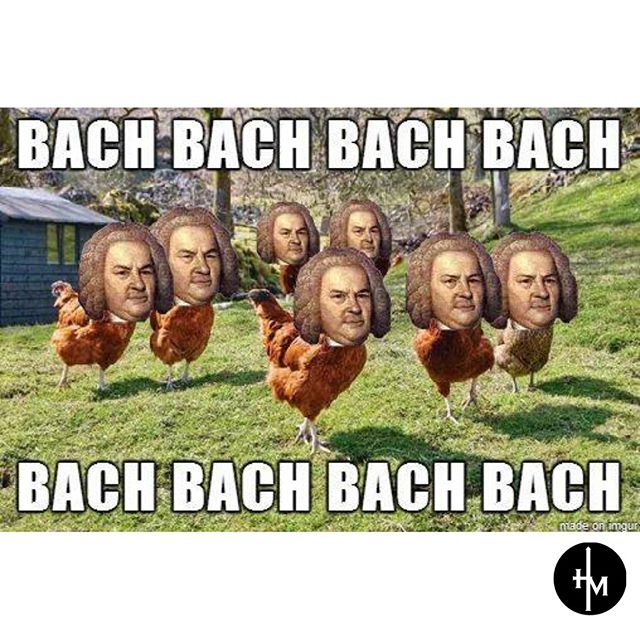 Classic chicken meme. 🤣🤣🤣 #meme #bach #itsallworship #hemustincrease #faith #jesusmusic #worshipmusic
