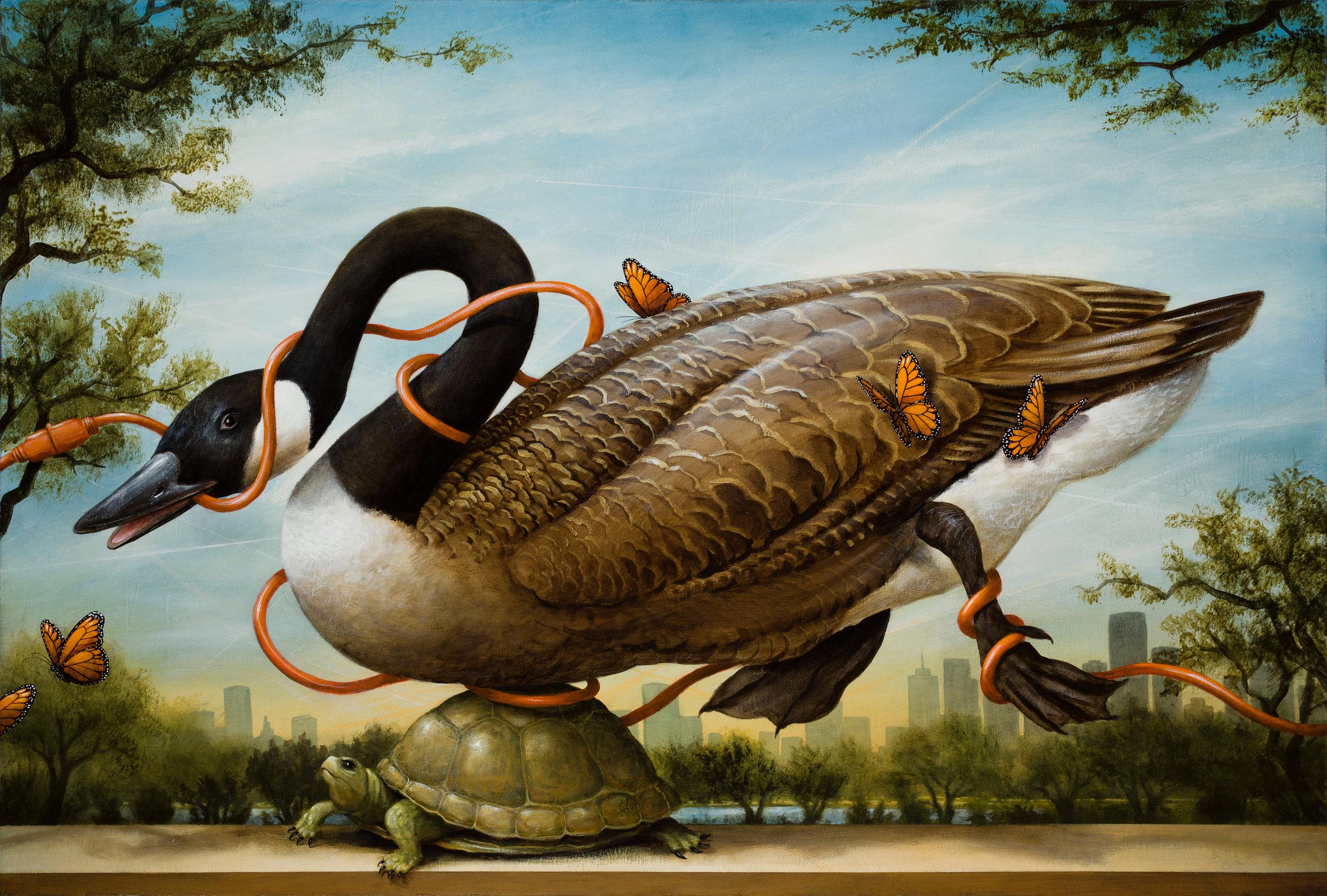 Kevin Sloan,  Birds of America - Migration Interrupted