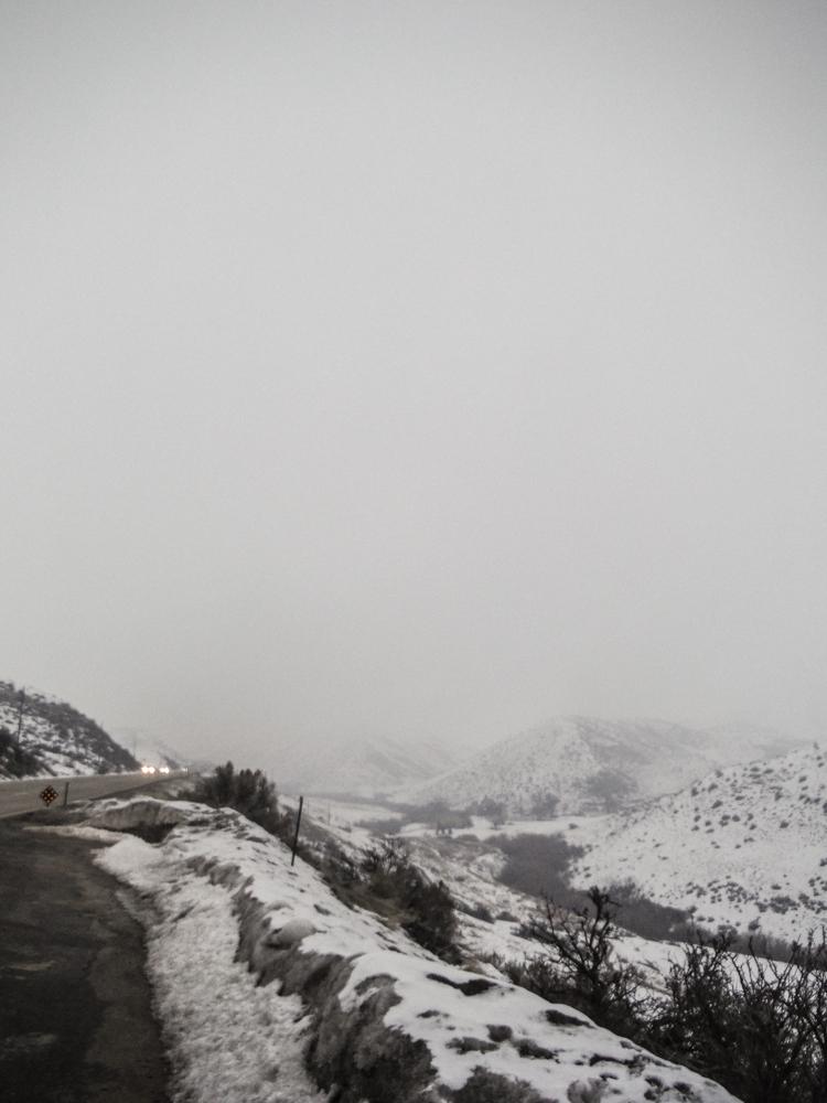 burke_2017_snow-3.jpg