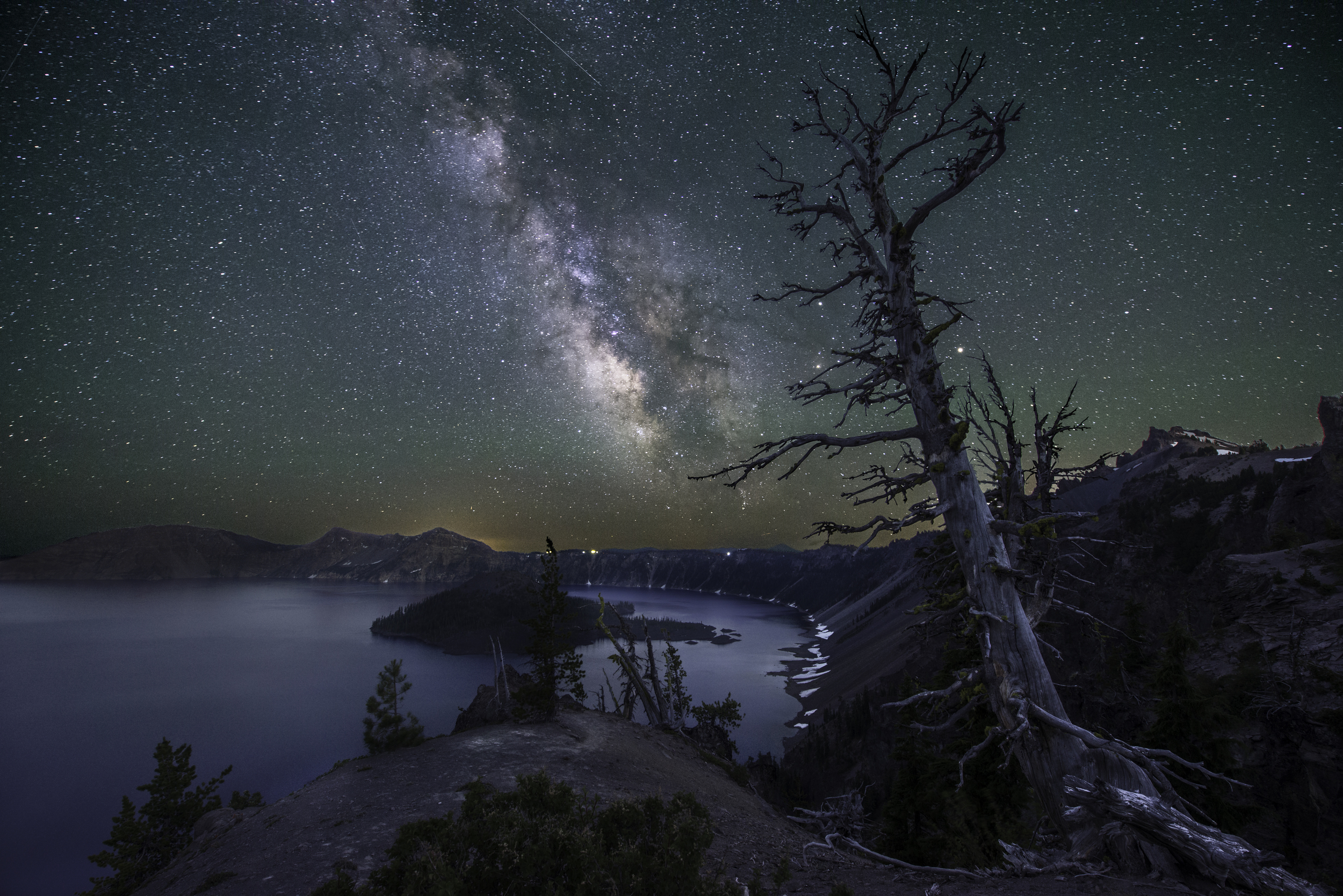 This lonely tree enjoys some of the best stars at Crater Lake, OR