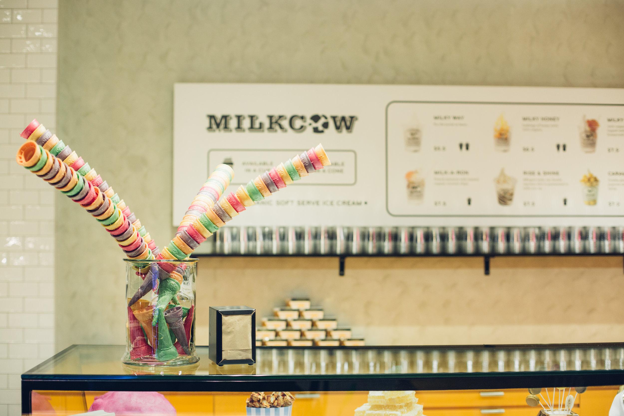 milkcow-24.jpg