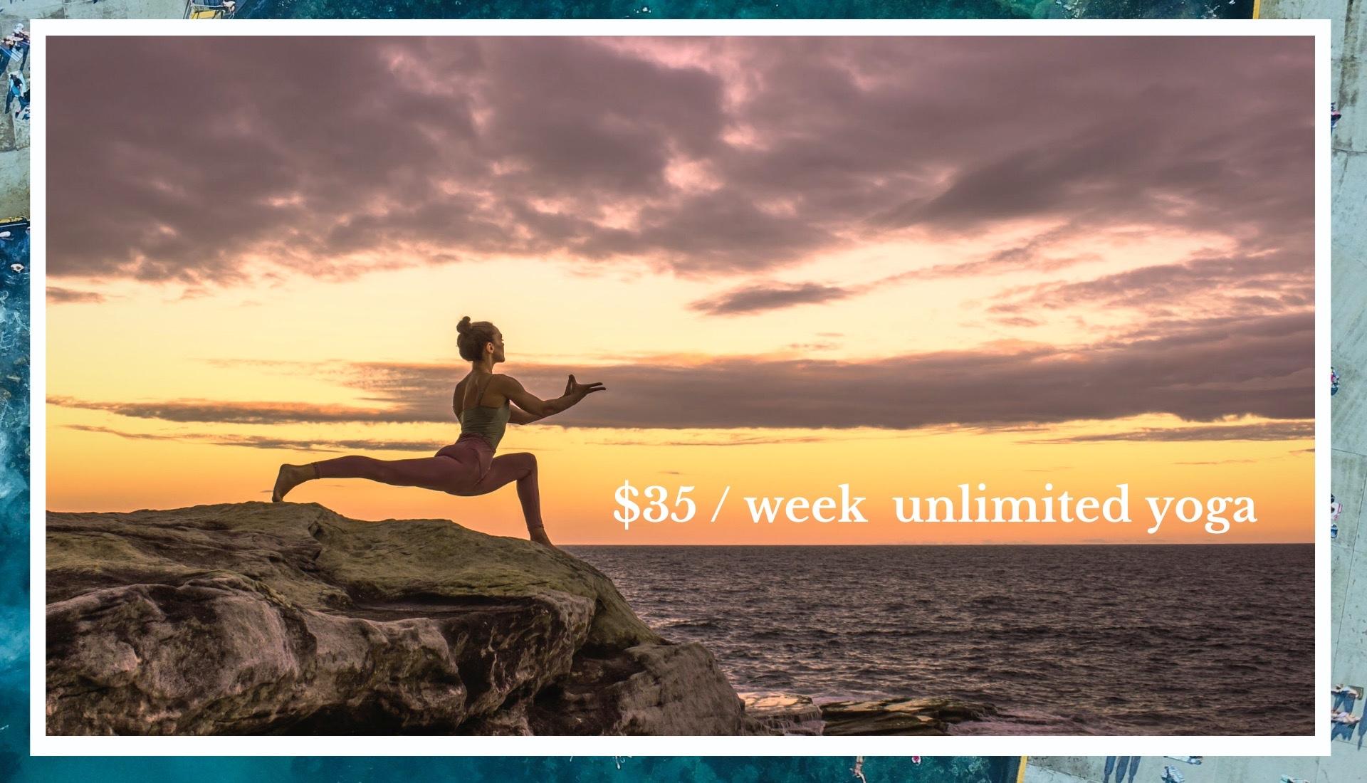 WEB Large banner $35 _ week.jpg