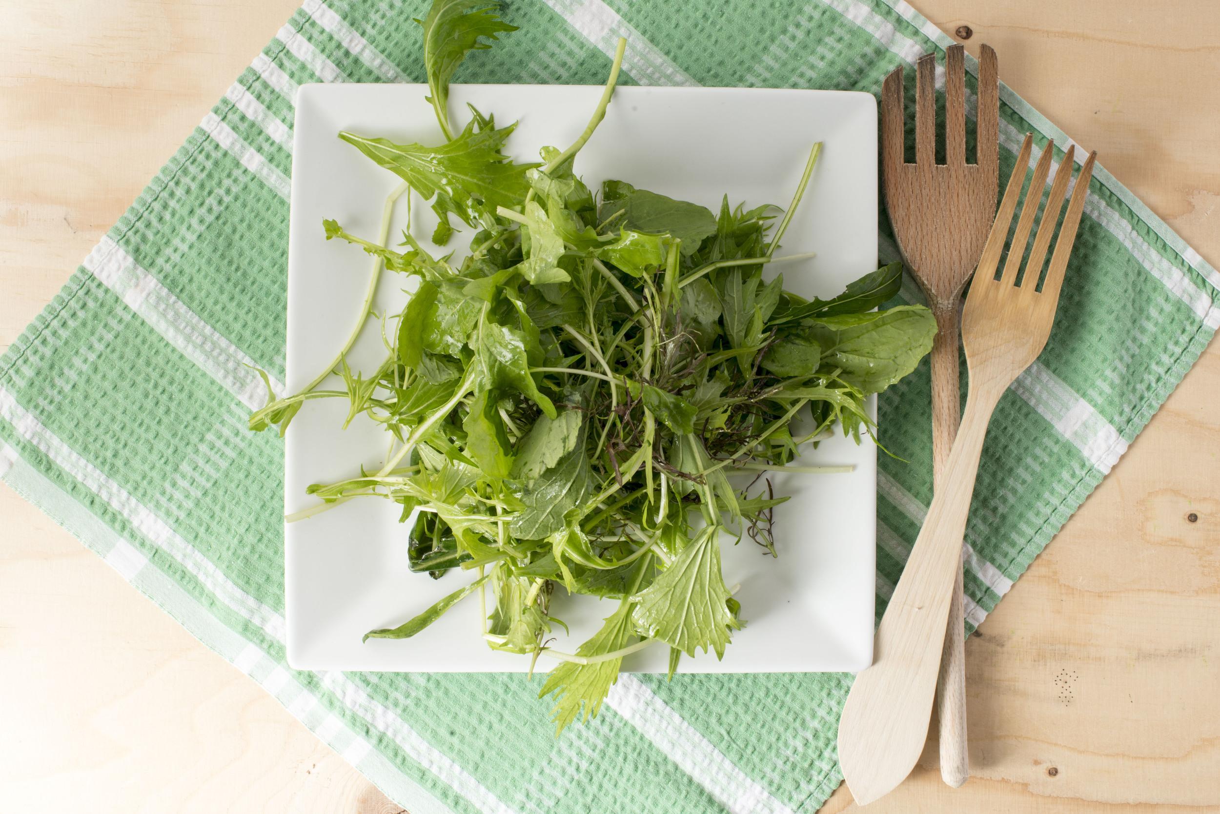 Farmers market mixed leaf salad