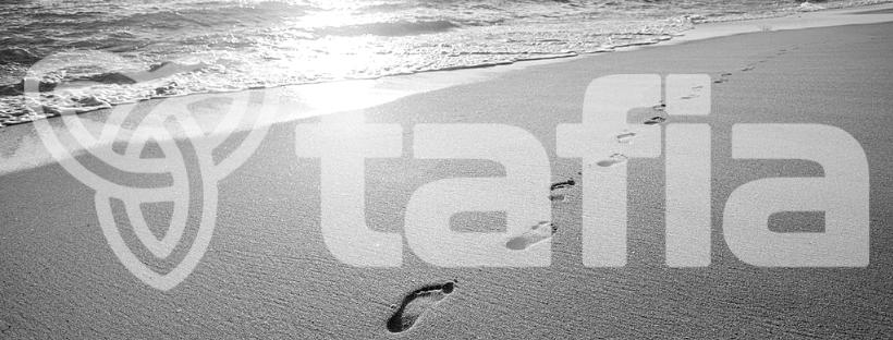 tafia-carbon-footprint