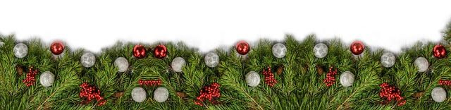 HolidayBorderGreenery.jpg