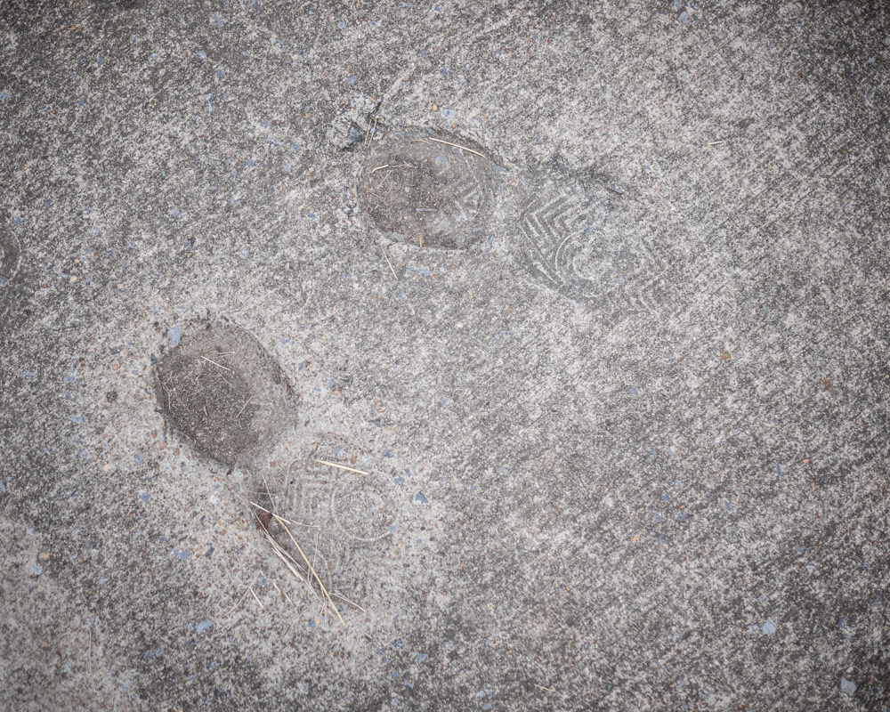 the footprints are Stephen's, in front of the family home.