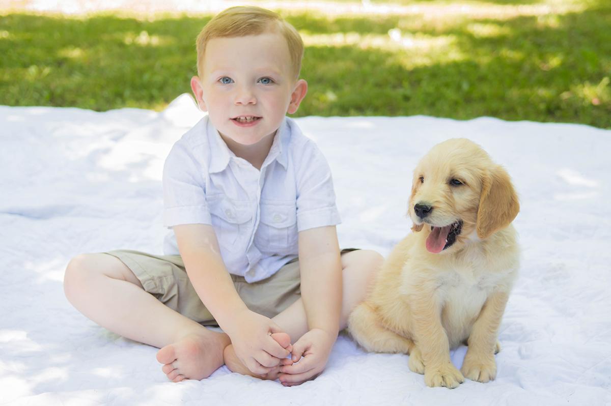 Stock Photography for Dog Breeder in McCune Kansas