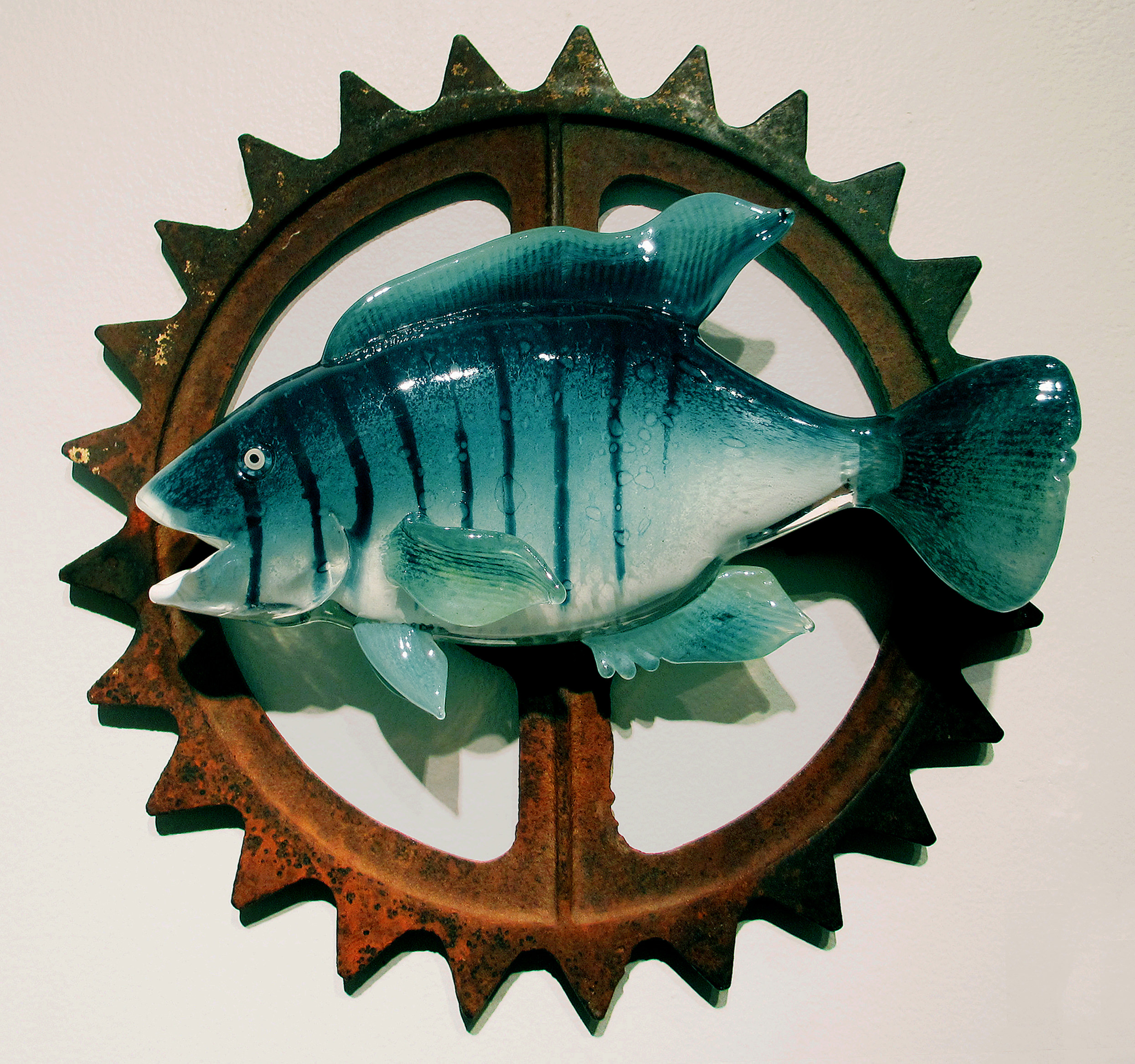 Blue Tilapia with Cog.