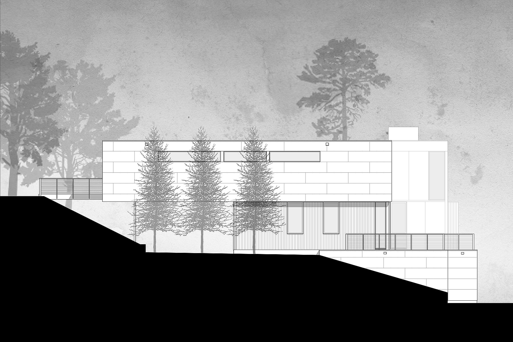 ALTUS-forest-lane-house-west-elevation.jpg