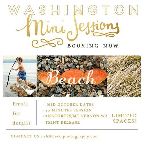 Mini_beach-becci-Photography-.jpg