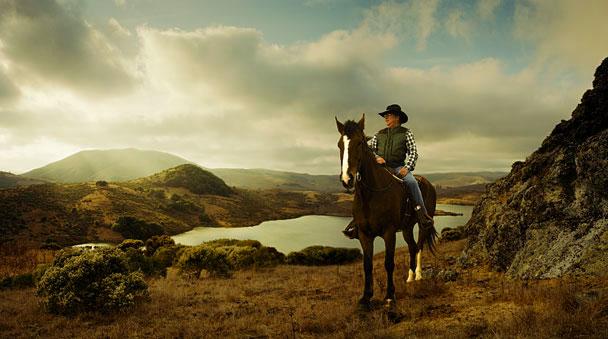 Lantus_Horse.jpg