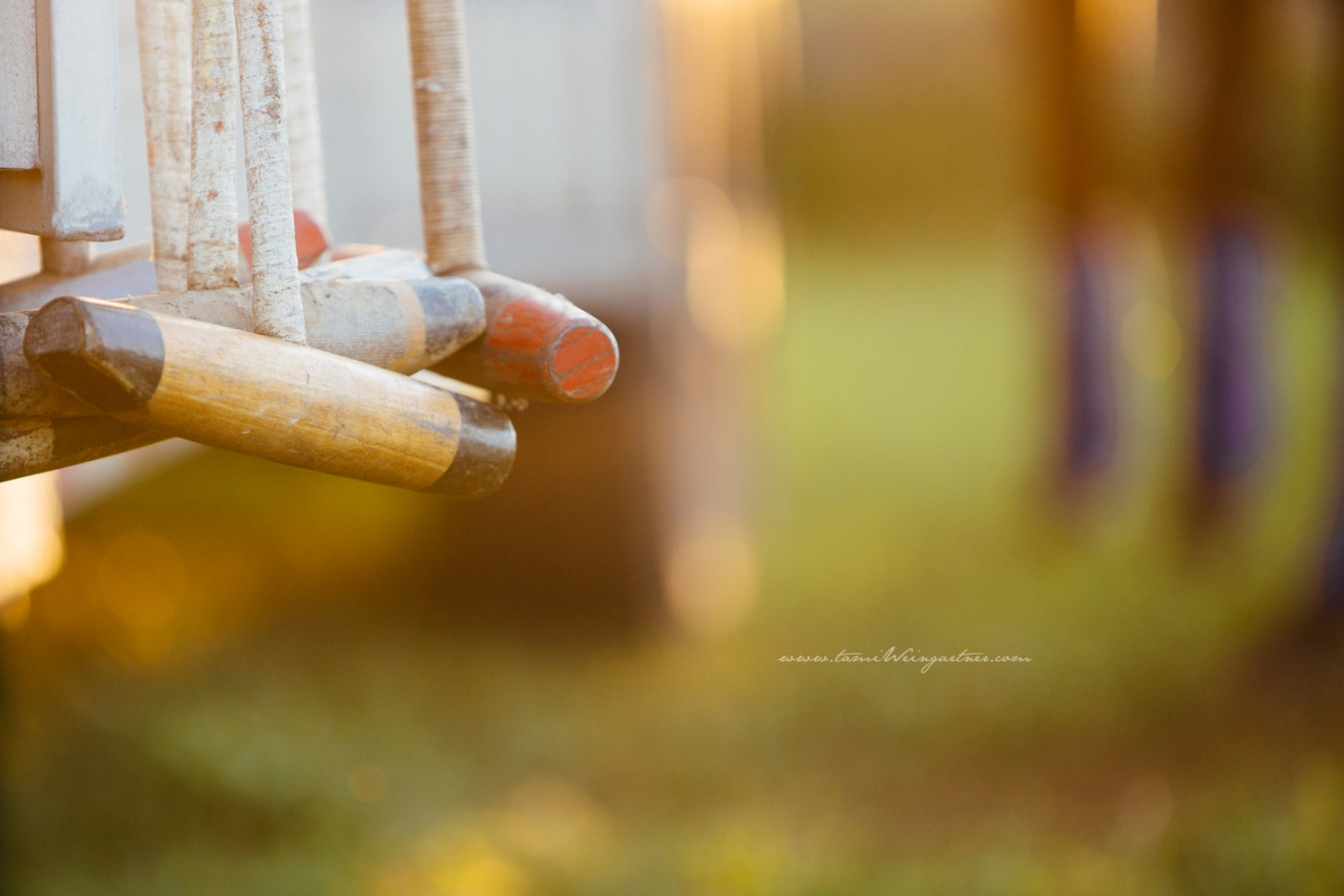Polo Mallets waiting for action