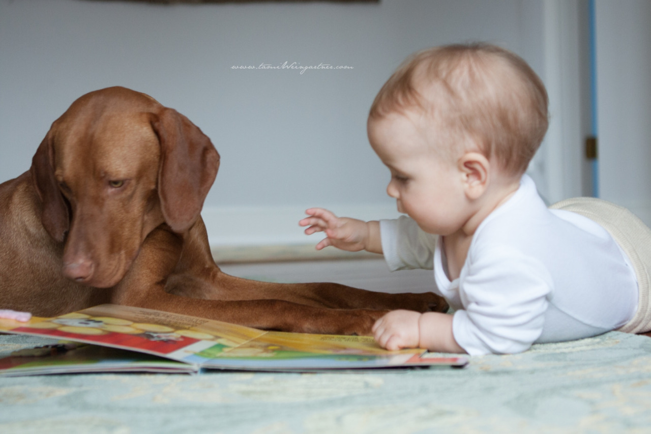 Reading time… the importance of letting a Lifestyle photo shoot of any kind just take a organic turn. Wait and be rewarded. This time a baby decides to follow suit and read to her dog. (after her mother and her had a session of mother reading to her)