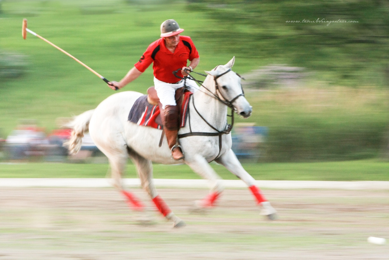 Polo at Darlington Polo Club. Glenn Watterson Sr playing on a white horse.