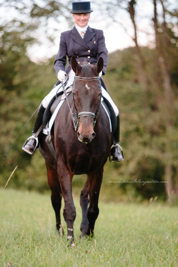 Kathy Montgomery, FEI Dressage Rider and Instructor, warming up retired FEI Hanoverian schoolmaster, Riverdance,