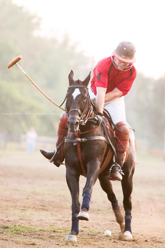 Polo in Darlington, PA