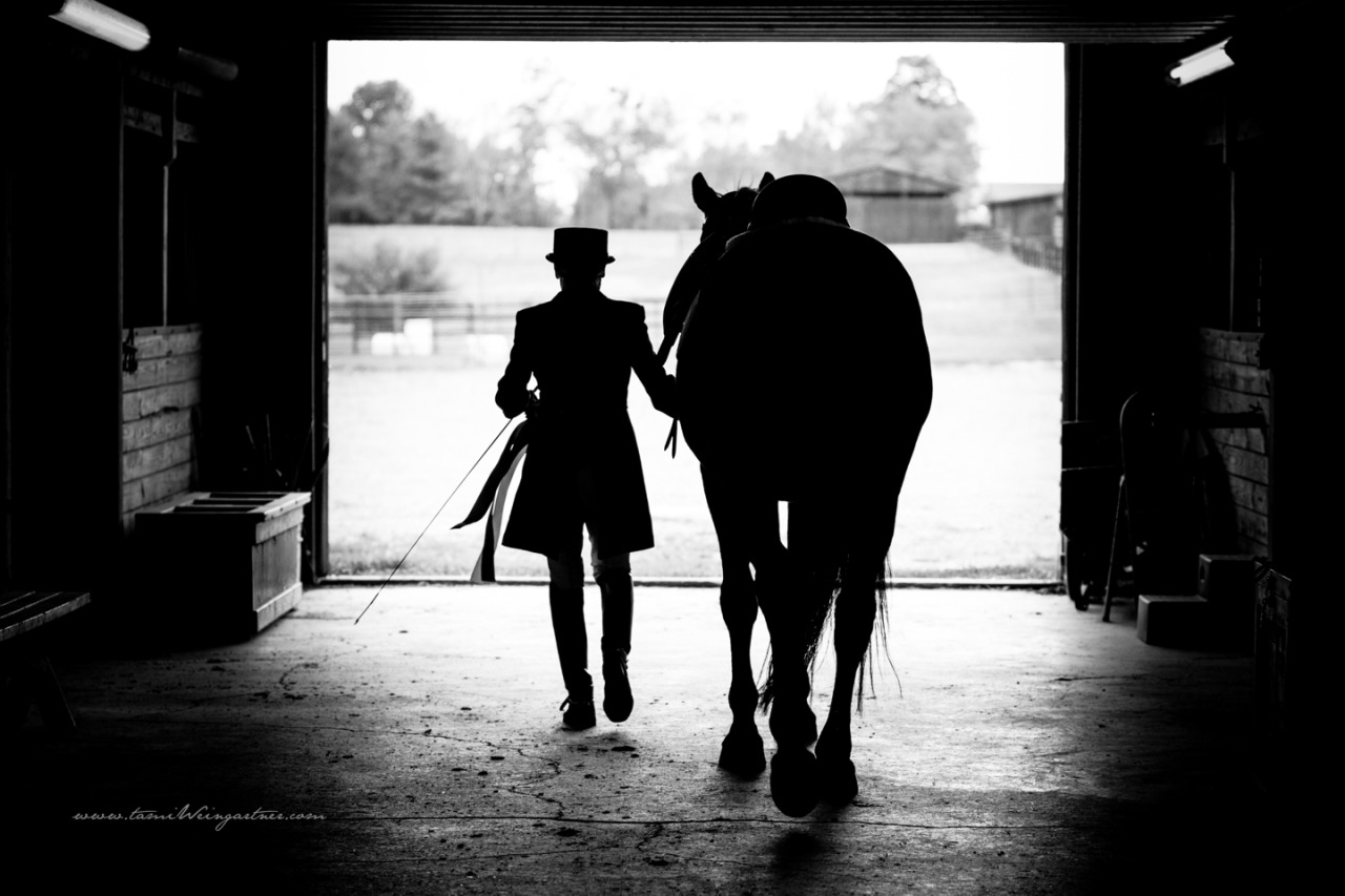 Kathy and the retired Hanoverian FEI horse, Riverdance.