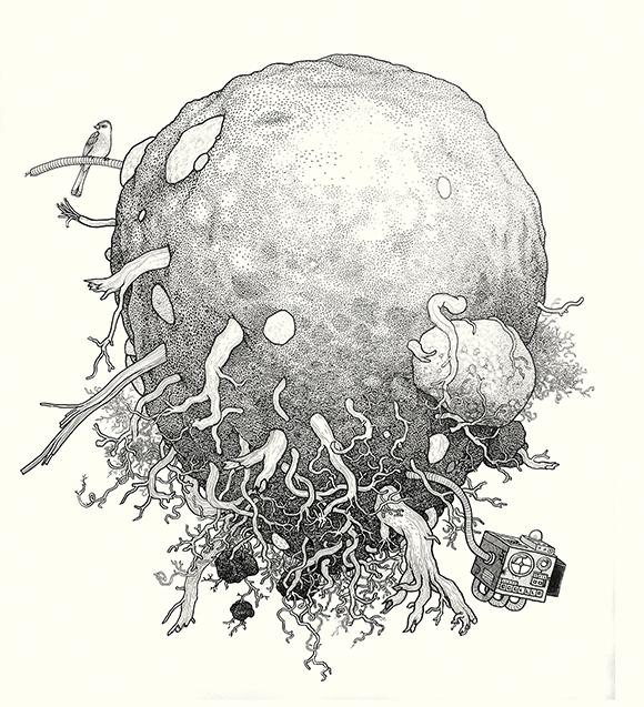 Rootball with Bird