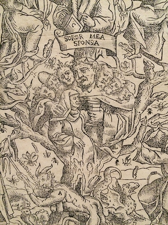From the other side, this is an image of Luther as a seven headed ogre who is also the trunk of a tree whose branches show the ever more radical branches of protestant faith. And he's also got a cup of wine for that sweet innocent nun (Luther did, in fact marry an escaped nun). I guess that's the devil (A) tending the tree.