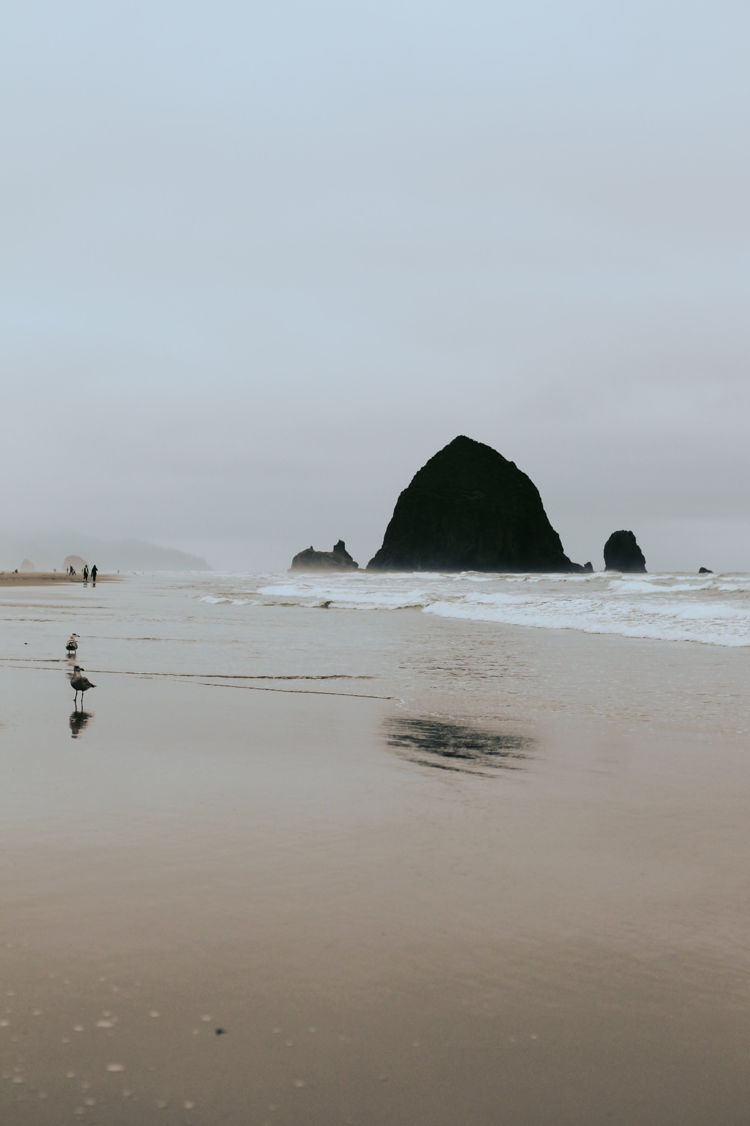 Jack Lambert Photography Cannon Beach-23.jpg