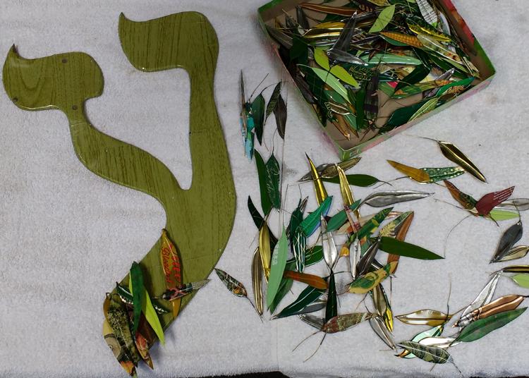 Berman-Hebrew-frog-eucalyptus-invasive