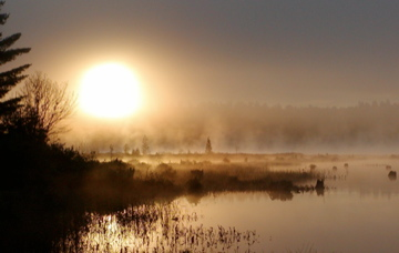 01 Sunrise through fog.jpg