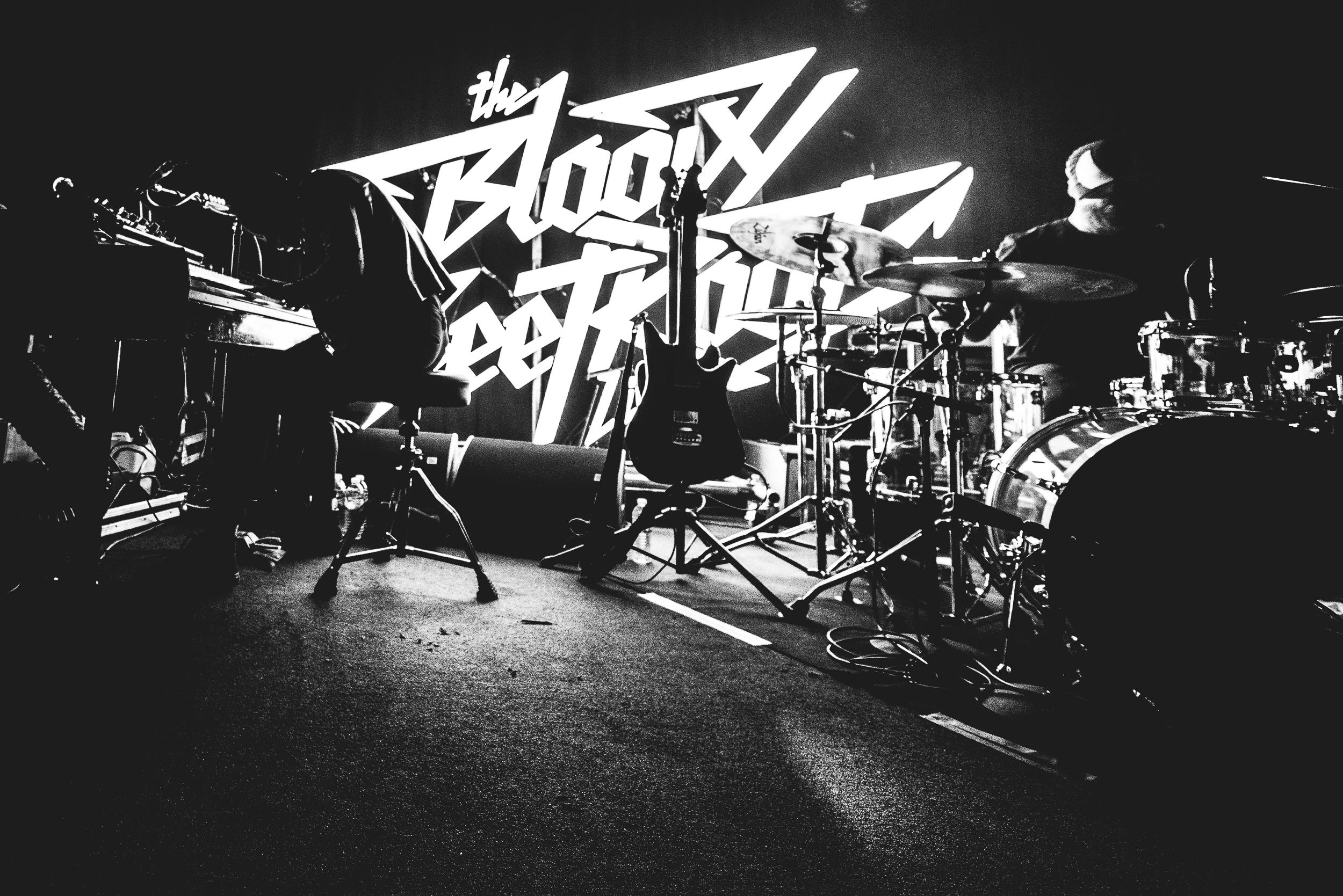 The Bloody Beetroots, Photo Alessio Neri-001-7.jpg