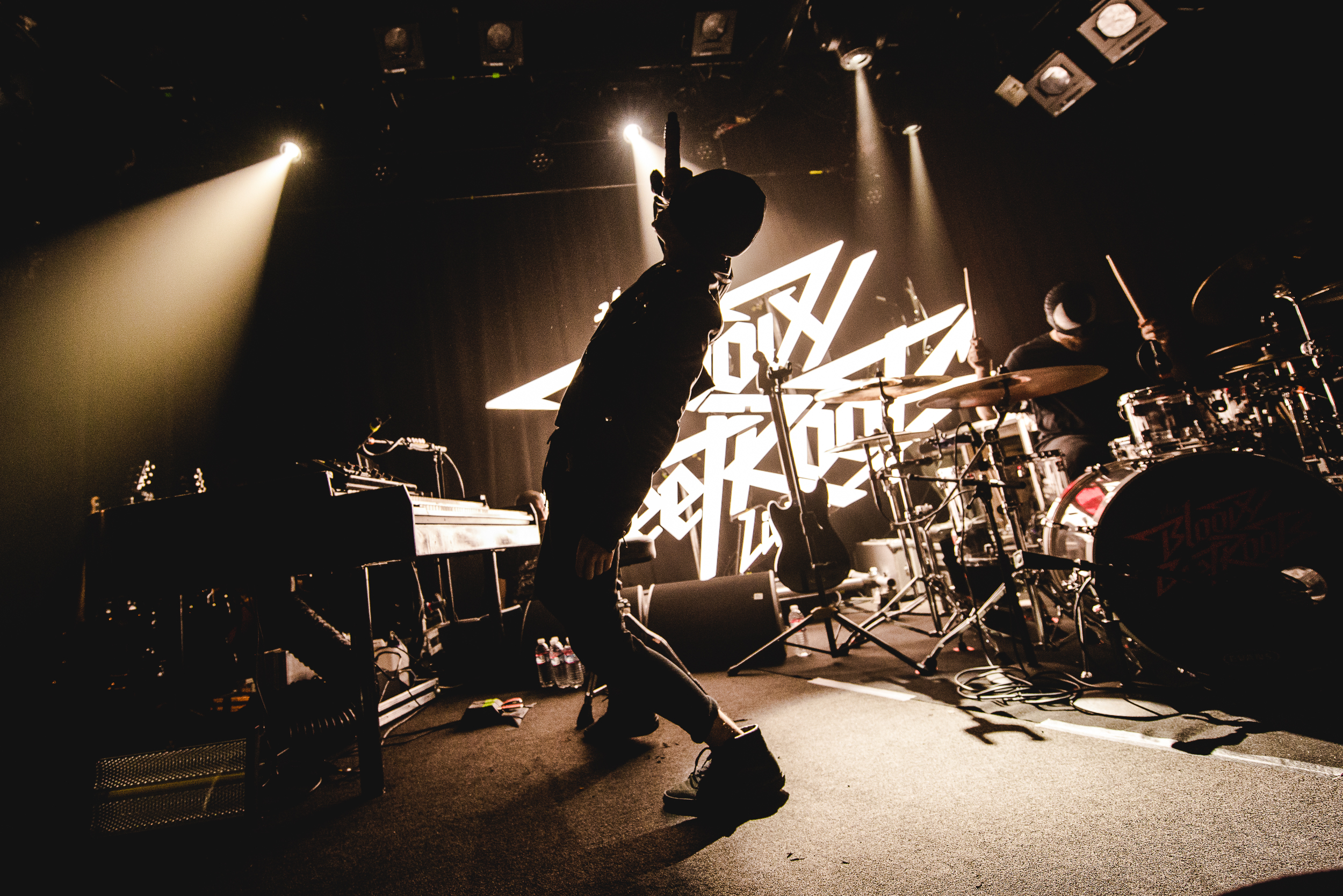 The Bloody Beetroots, Photo Alessio Neri-001-6.jpg