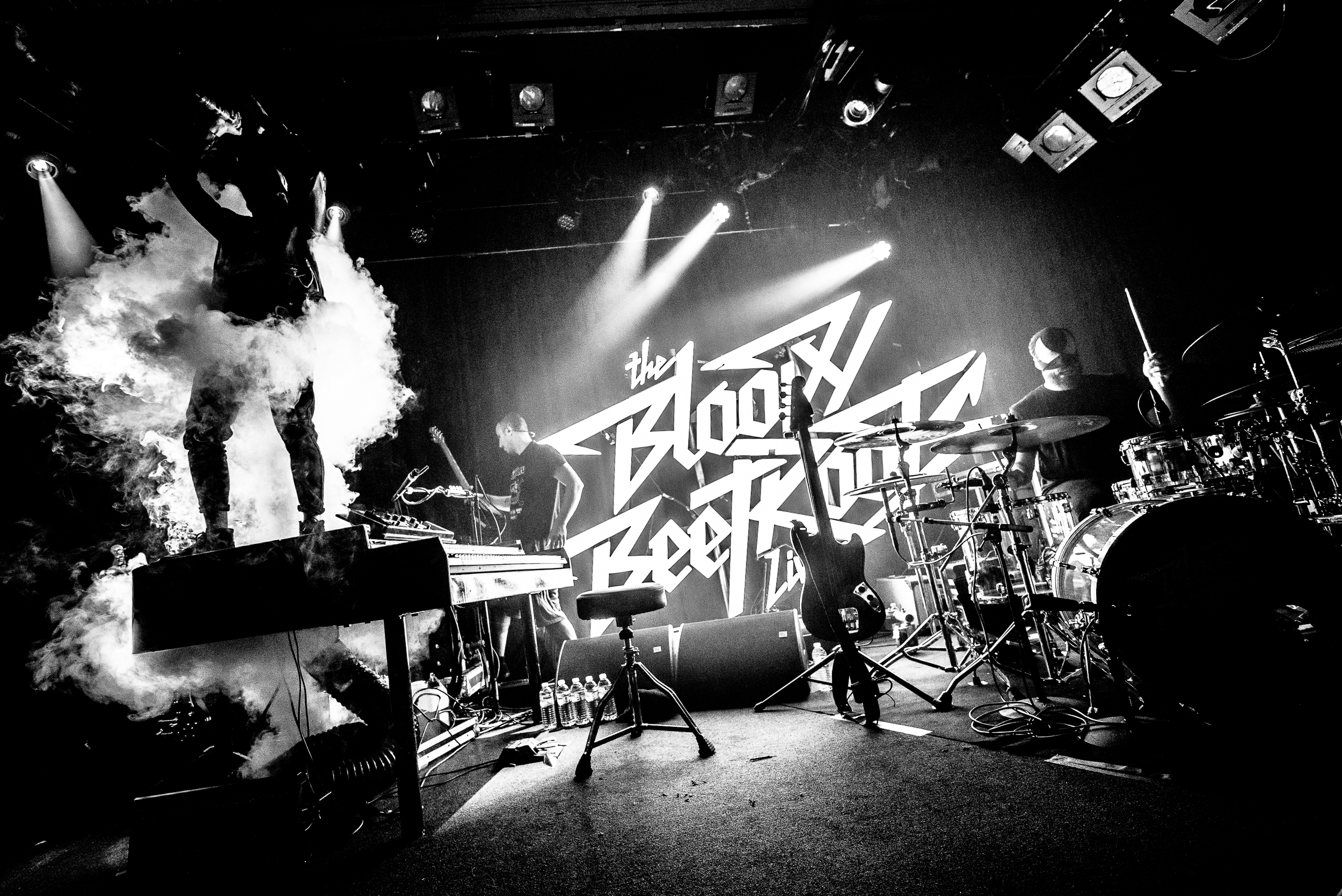 The Bloody Beetroots, Photo Alessio Neri-001-14.jpg