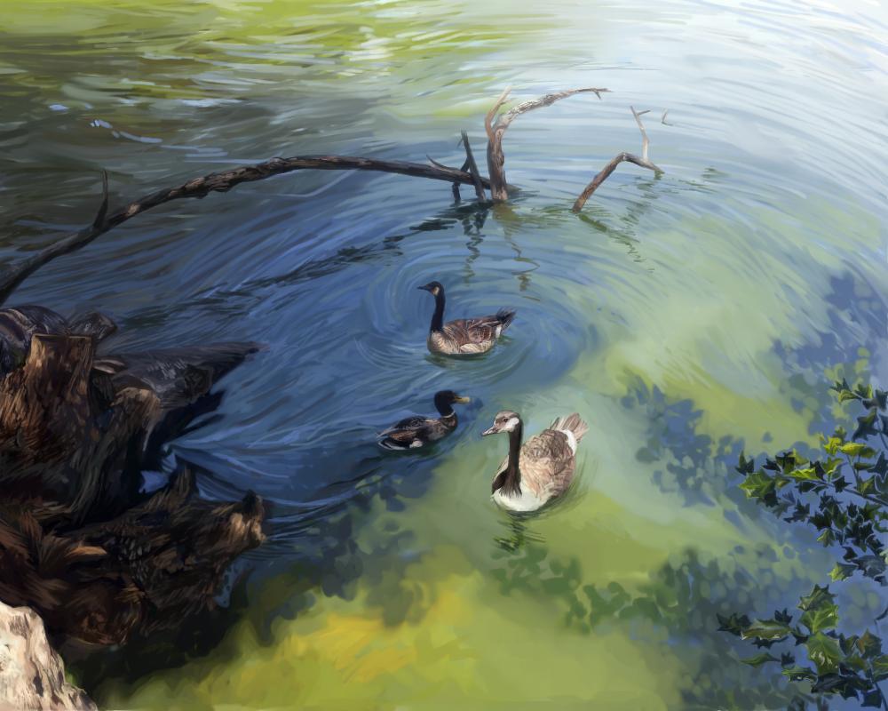 Guardians of the Pond (digital) - Sandy Li
