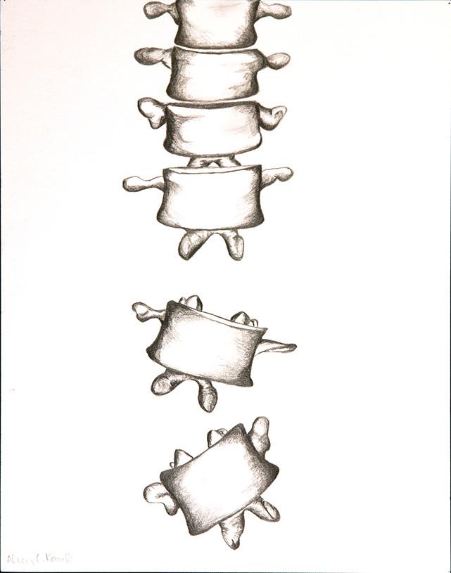 Falling Vertebrae (pencil) - Alicia Kaneb