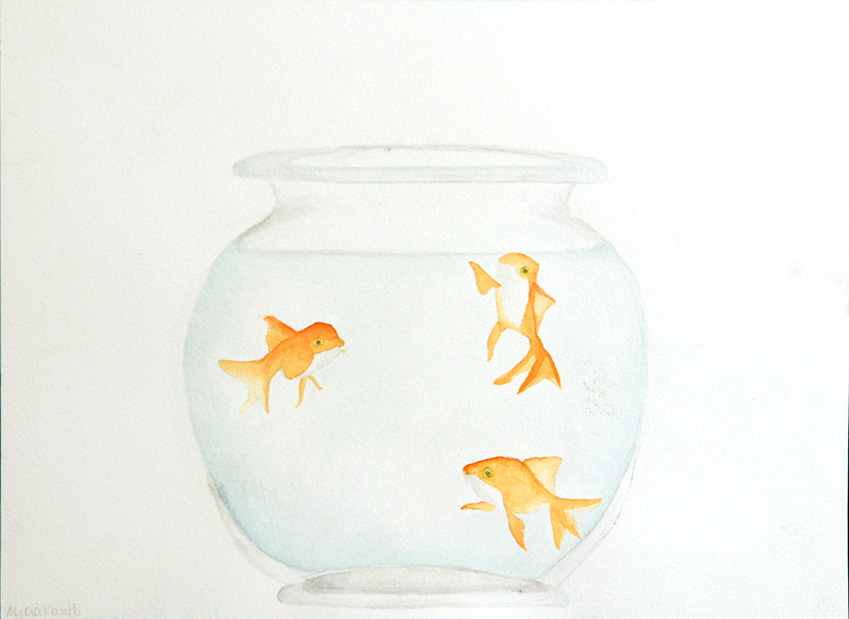 Swimming in Circles (watercolor) - Alicia Kaneb