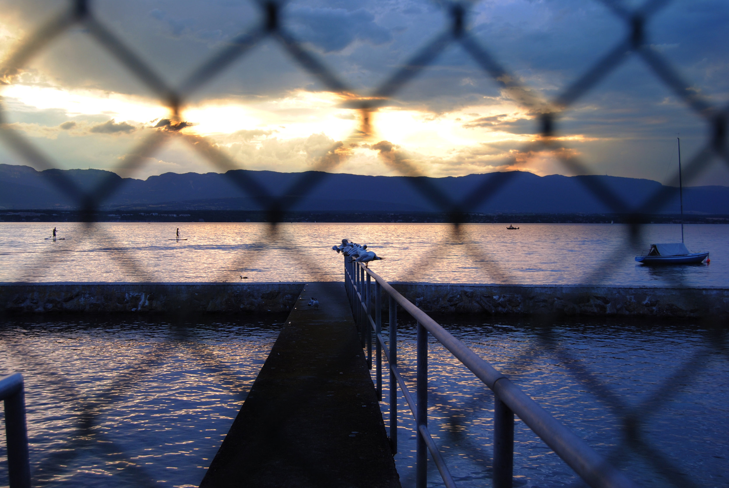 The Lake - Sophie Smyke
