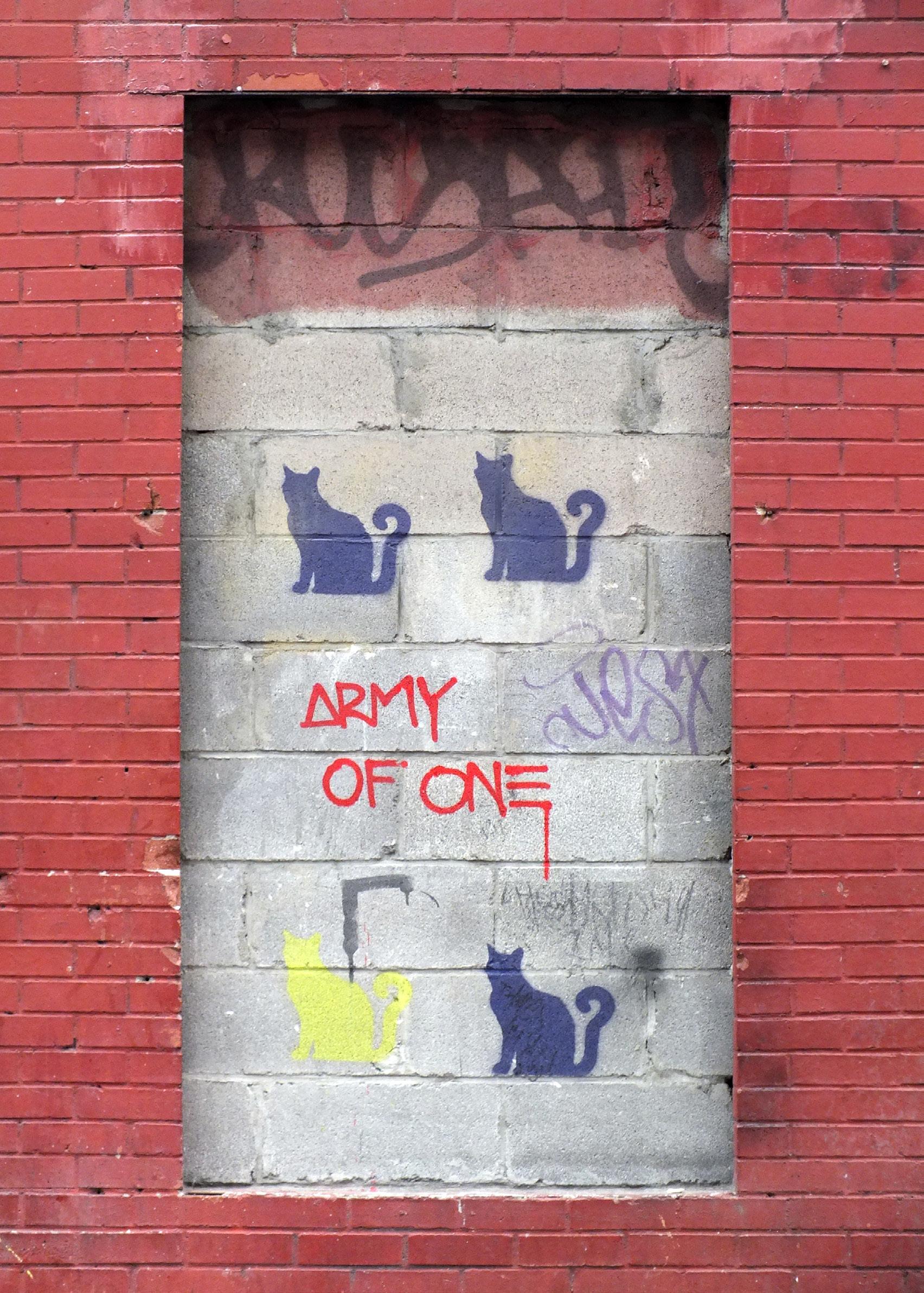 Army of One - Amanda Ugorji