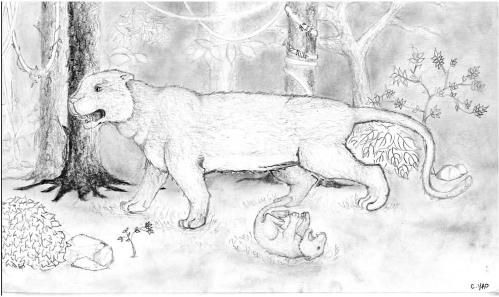 Tiger Mom (graphite) - Christine Yao