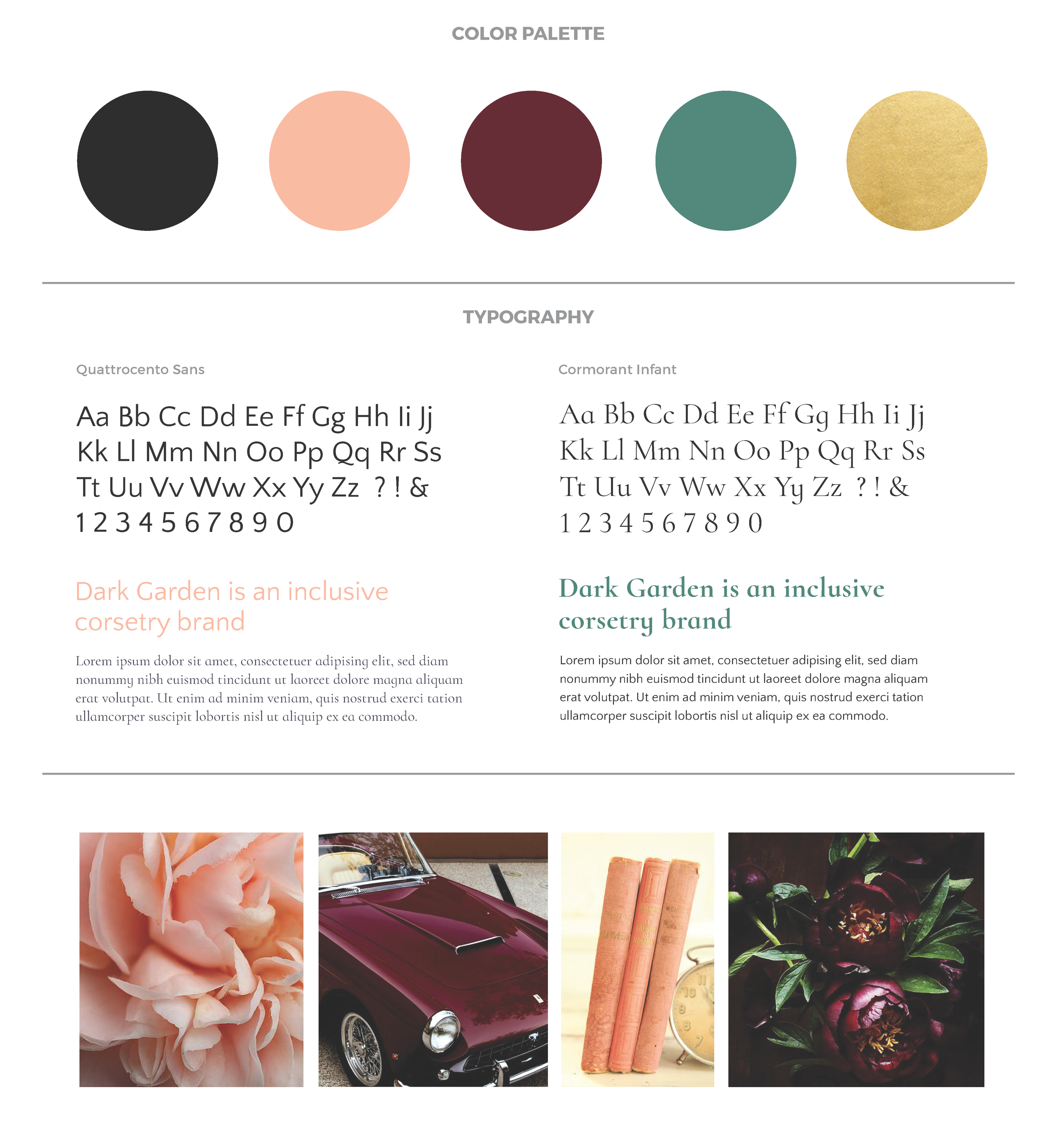 DarkGarden-Rebrand-ColorType.png
