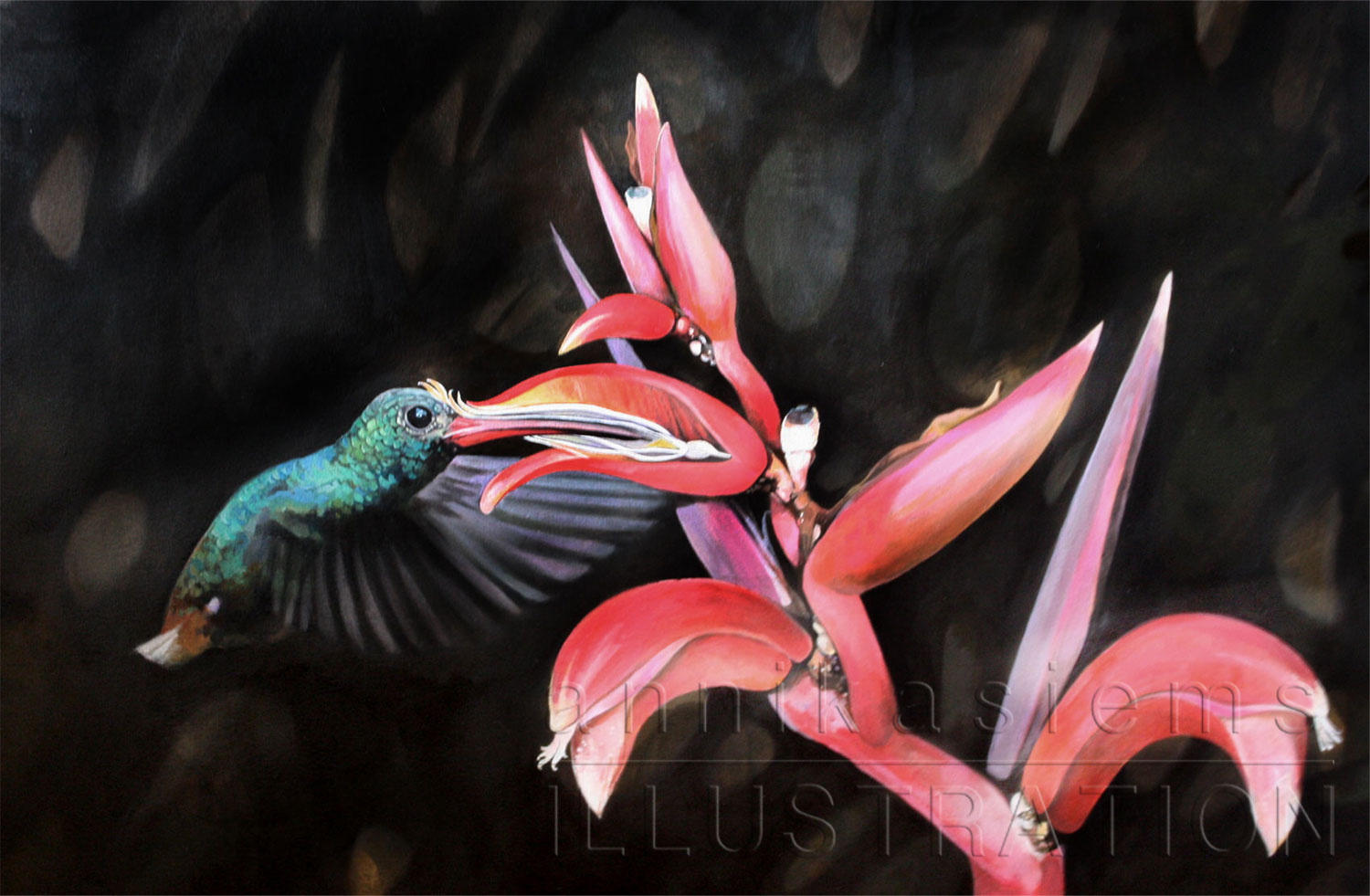 Oil on paper, symbiosis of hummingbird and plant.