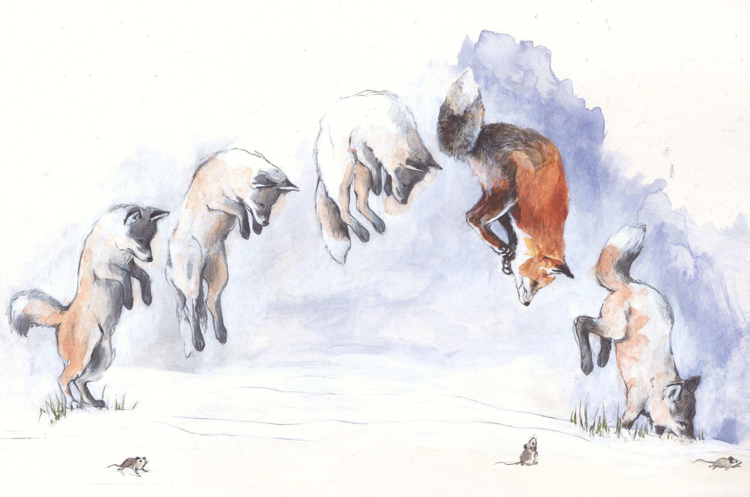 Fox, mice jump, illustration for Walden-magazine