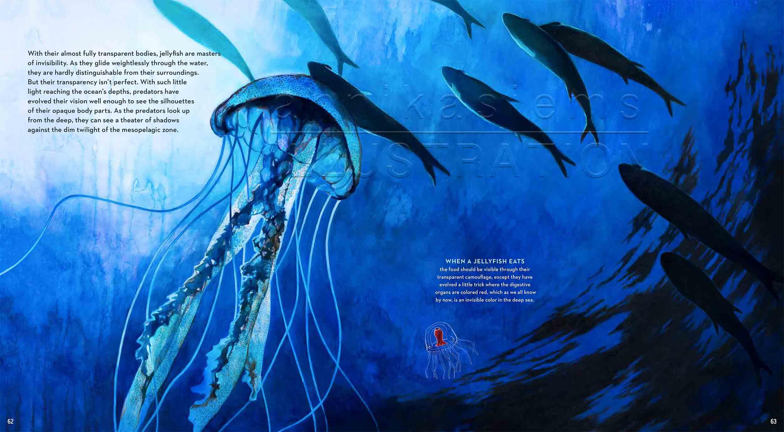 62-63Jellyfish-deep-sea-Englisch-submersible-©annikasiems-plankton_deepsea-zooplankton.jpg