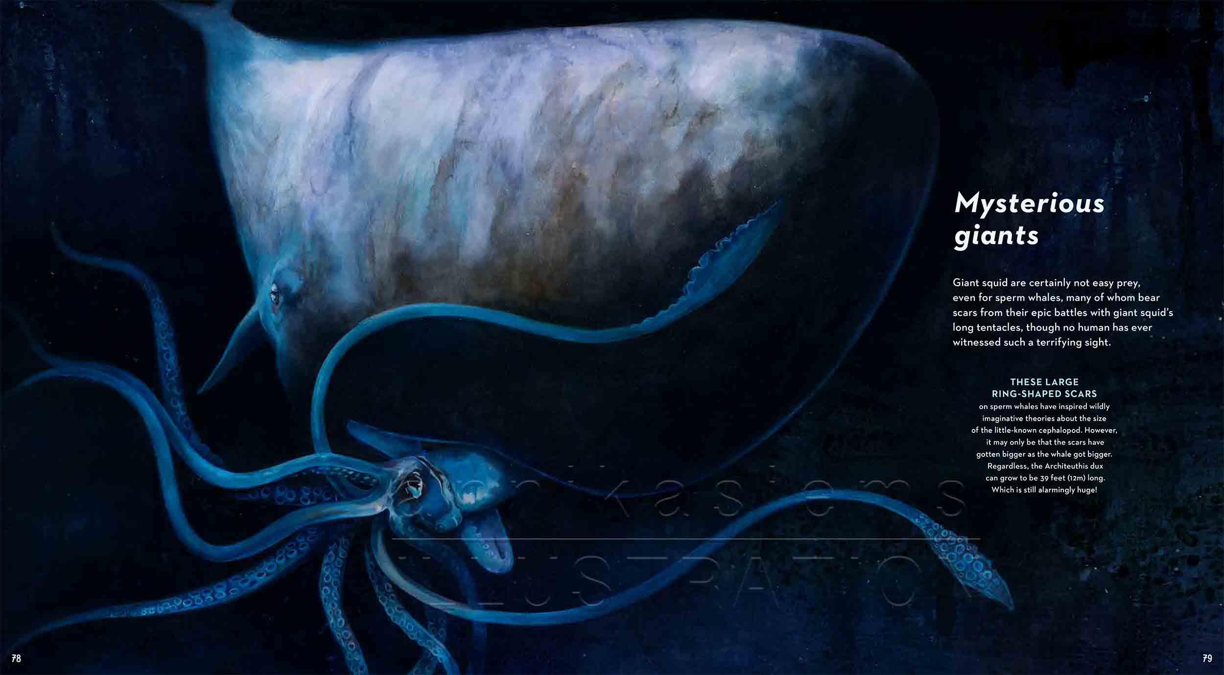 78-79-spermwhale-giantsquid-deep-sea-Englisch-submersible-©annikasiems-plankton_deepsea-zooplankton.jpg