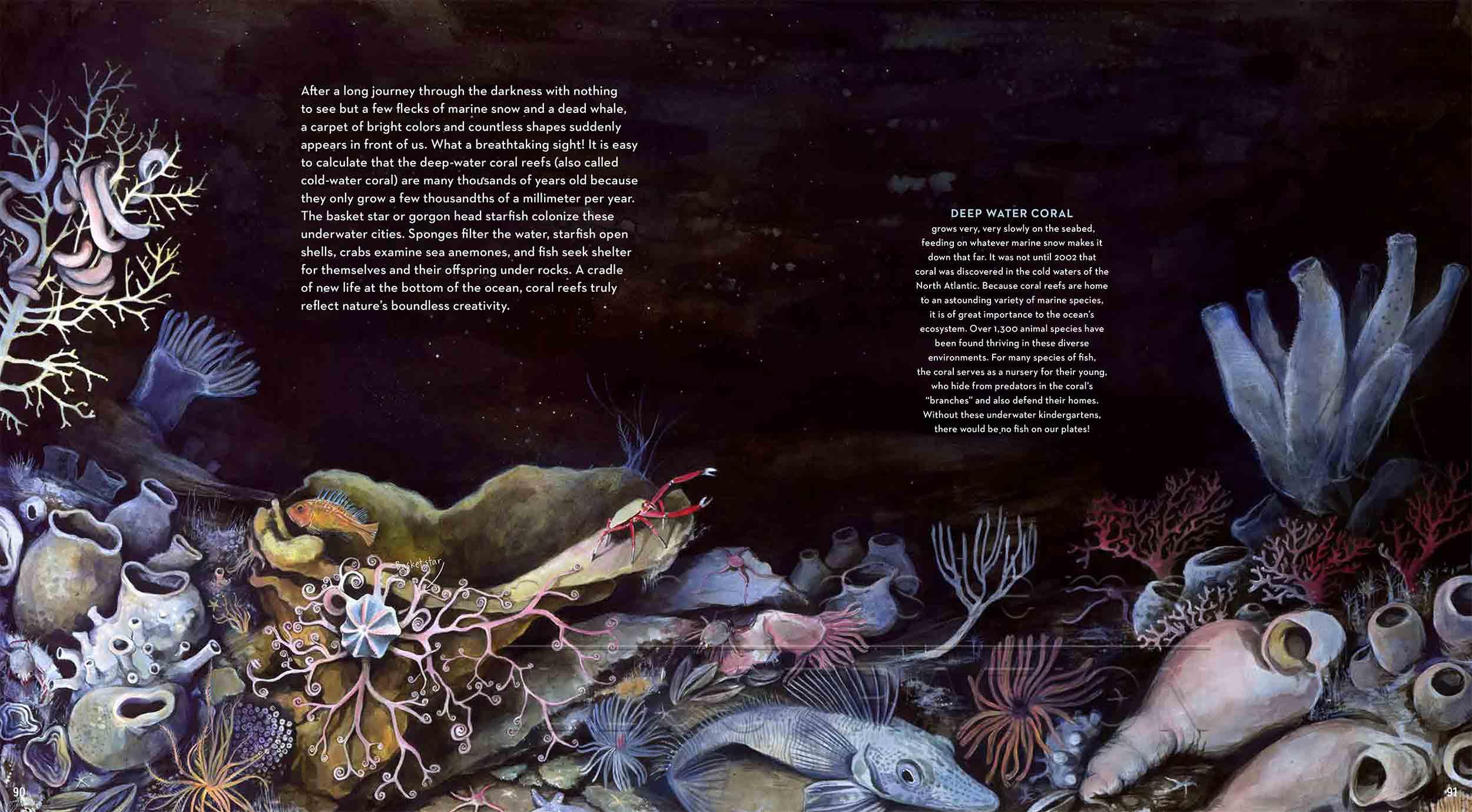 90-91-coralreef-seabed-deep-sea-Englisch-submersible-©annikasiems-plankton_deepsea-zooplankton.jpg
