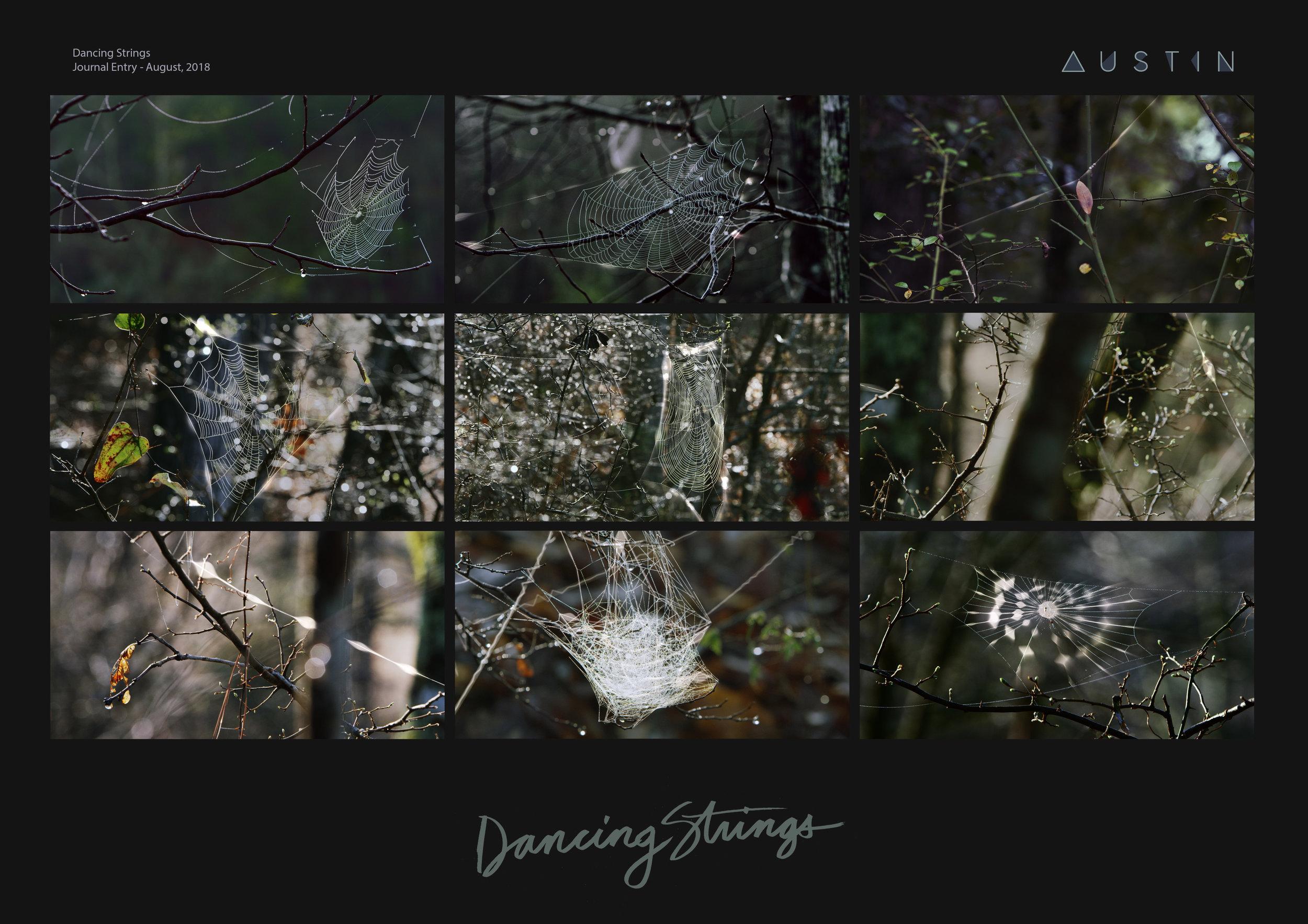 Dancing-Strings-Pres_FIN.jpg